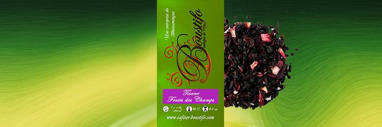 Tisane - Fruits des Champs